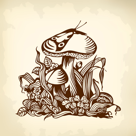tekening vlinder: Paddestoel in het gras. Vlinder. Tekenen.