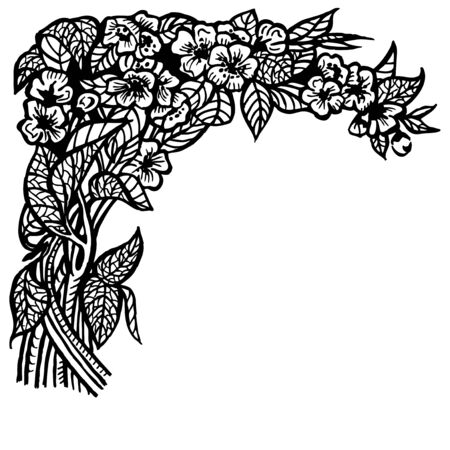 A branch of a jasmine with flowers and leaves. Drawing. Vintage.