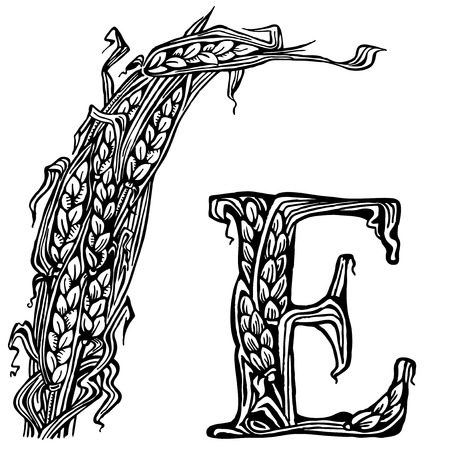 Sheaf, ears and the letter E. drawings.