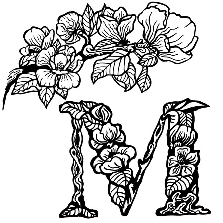 Twig of magnolia flowers and leaves. Litera M. Zdjęcie Seryjne - 33740560