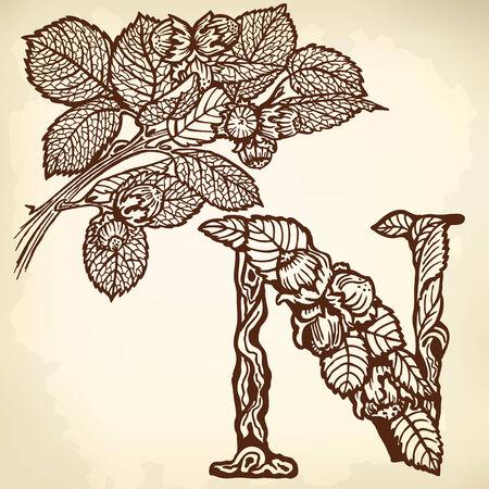 Thread hazelnut, nuts and leaves. Litera N. Zdjęcie Seryjne - 33740571