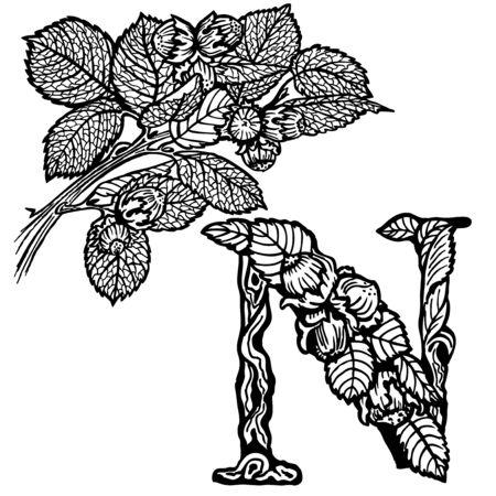 Thread hazelnut, nuts and leaves. Litera N. Zdjęcie Seryjne - 33740580