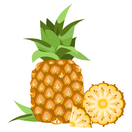 slice: Pineapple - a fruit with leaves and cut into chunks. Illustration