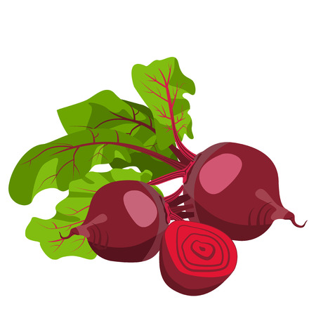 beetroot: Beetroot, whole and cut into slices on a white background. Template. Illustration