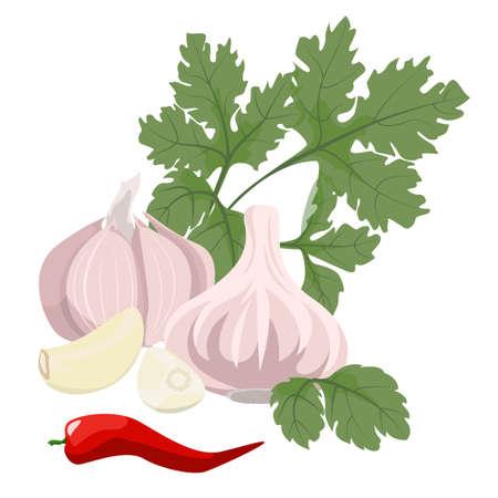 garlic: Dientes de ajo, perejil y pimiento rojo picante. Comida sana.
