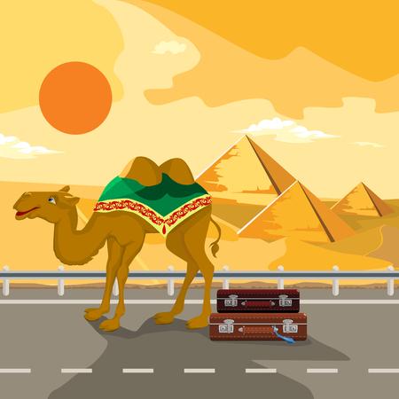khafre: Pyramids and camel going through the desert. Template album.