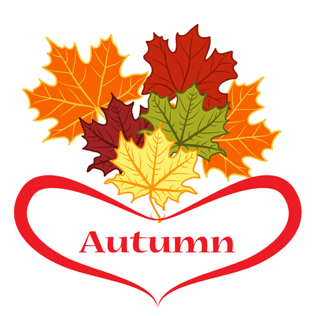 autumn colors: Autumn leaves of different colors. Painted red heart. Autumn.
