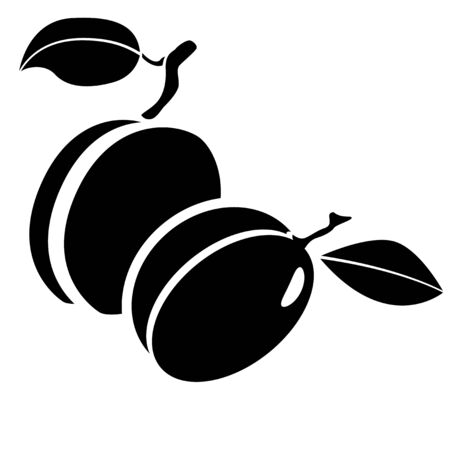 Black and white illustration. Group of plums with leaf