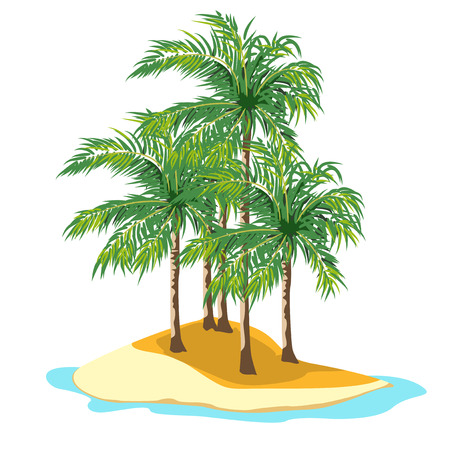 subtropical: Small island in the sea. The yellow sand palm trees with green branches.
