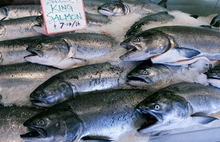 Wild King salmon in Pike Place market, Seattle