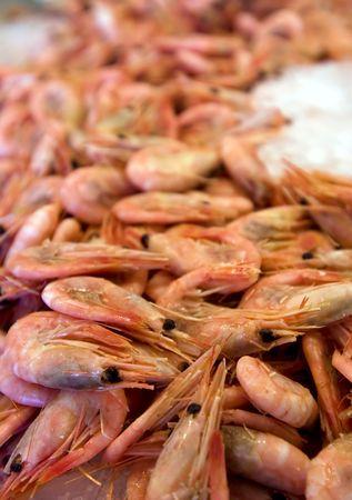 Crawfish at market photo