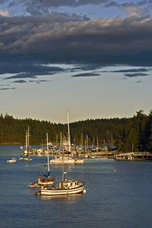 Boats in the bay photo