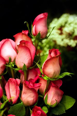 Roses arrangement photo