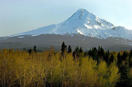 Mt. Hood, Oregon in April