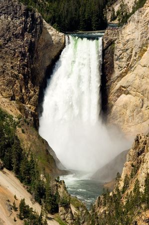 Lower Falls, Grand Canyon of Yellowstone national park photo