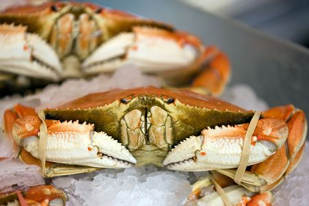 pike: Seafood row in Seattles Pike Place market