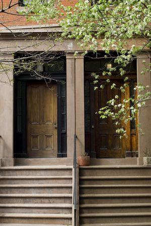 brownstone: Blooming trees before Brooklyn brownstone on Brooklyn Hights neighborhood