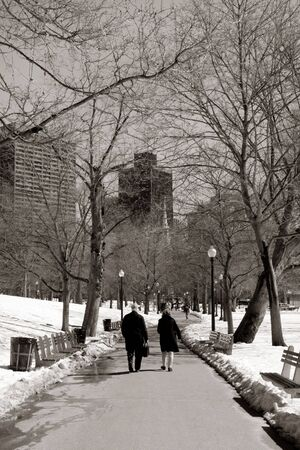 boston common: People walking in the alley of Boston Common in winter Stock Photo
