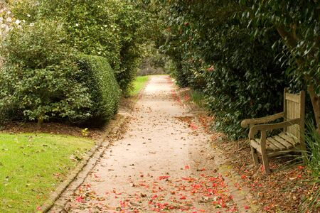 Garden alley and the bench in old plantation of South Carolina photo