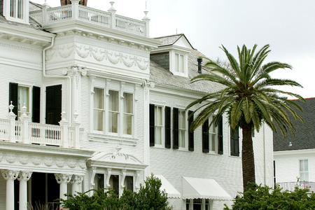 White mansion with palm tree on foreground in New Orleans Garden district