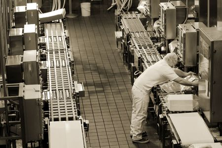 industrial machinery: Factory production line in Oregon cheese factory
