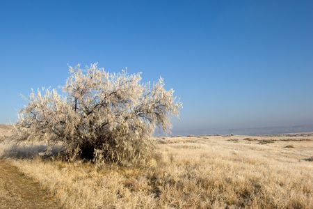 midwest usa: Winter landscape in rural Idaho, Midwest USA Stock Photo
