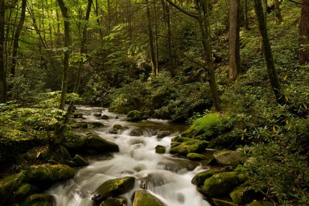 river stones: Mountain stream in Great Smoky Mountains Stock Photo