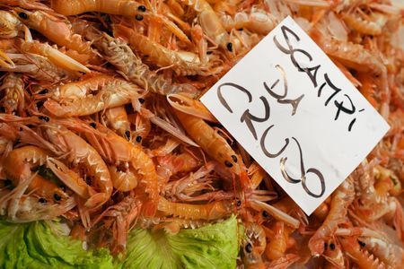 Fresh shrimps on market stall of Venetian Rialto Fish market