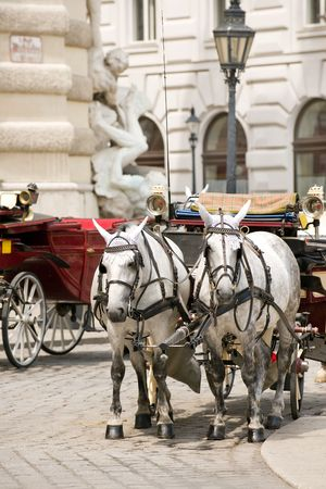 platz: Horsedrawn carriage on the platz by the Hofburg Palace, Vienna