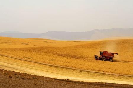 Combiner harvester dans les champs de cultures Palouse Hills, état de Washington Banque d'images - 6417451