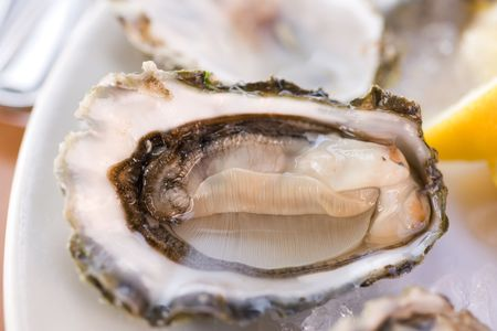 Fresh half-shell oyster on the  plate in Seattle restaurant. Shallow DOF photo
