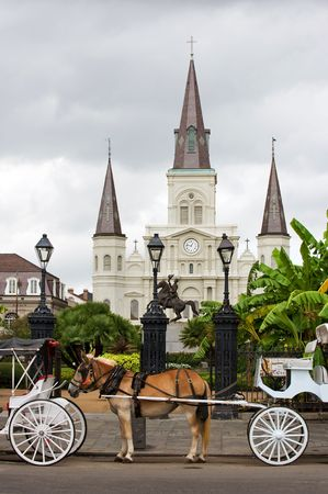 horse drawn carriage: Horsedrawn carriages on Jackson square with St Louis cathedral, New Orleans
