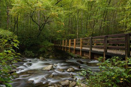 Pont sur le flux de montagne dans le Parc national de Great Smoky Mountains Banque d'images - 6594988