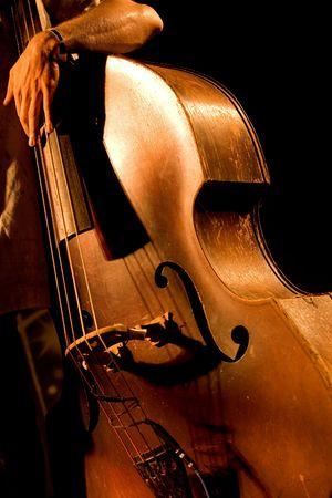 instrumentos musicales: Mano del m�sico en el contrabajo en el concierto en vivo