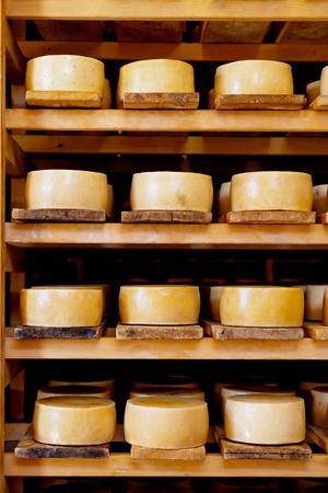 乳製品の棚に世界有名なクロアチアの Pag チーズ 写真素材