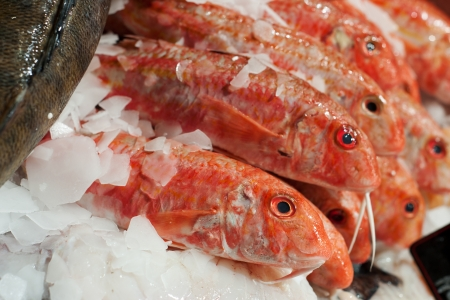 Fresh red snapper at seafood stall of Metz covered market