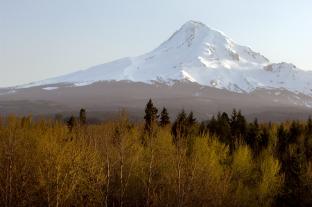 mount hood: Mount Hood, Oregon highest mountain and volcano, in the fall