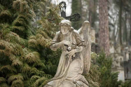 angel cemetery: Weeping angel tombstone in famous Lychakiv Cemetery, Lviv Stock Photo