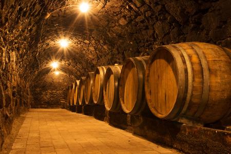 tasting wine: Oak barrels in the tunnel of Tokaj winery cellar