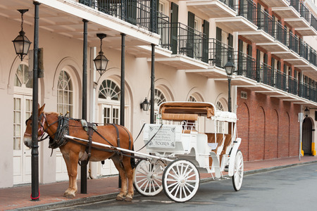 french: Elegant horse-drawn carriage in French Quarter, New Orleans
