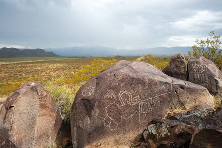 nm: One of the rocks in Petroglyph National monument, NM