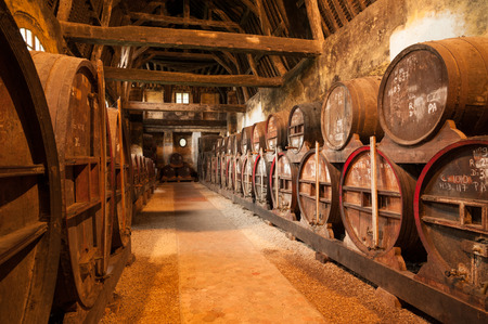 Row of oak barrels in Calvados distillery  Normandy Editorial