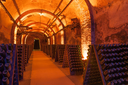 champagne region: Rows of dusty champagne bottles in Reims cellar, France