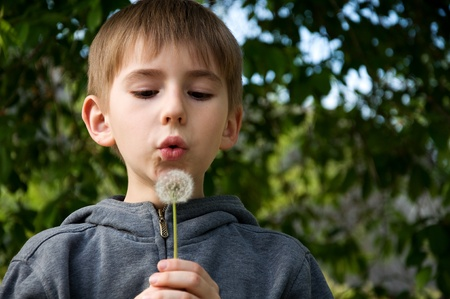 only boys: eight years old child blowing Dandelion seed outdoor in spring garden. Stock Photo