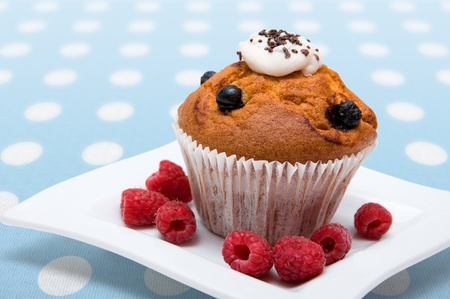 cupcakes with raspberries on white plate Stock Photo - 9870609