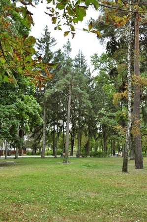 recedes: early autumn in the park