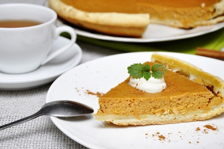 Slice of pumpkin pie with whipped cream and mint served on white plate Stock Photo - 11005412