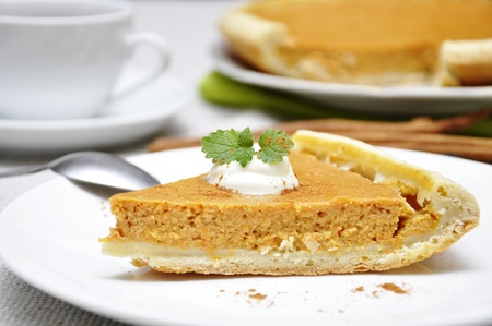 Slice of homemade pumpkin pie with whipped cream and mint Stock Photo - 11005419