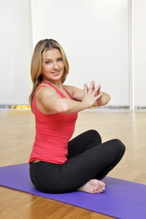 Young beautiful fitness girl exercising in the gym Stock Photo - 11546554