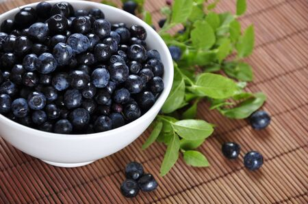 Blueberries in a white bowl with  and blueberry twigs photo